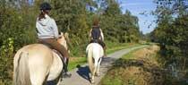 equitazione_passeggio